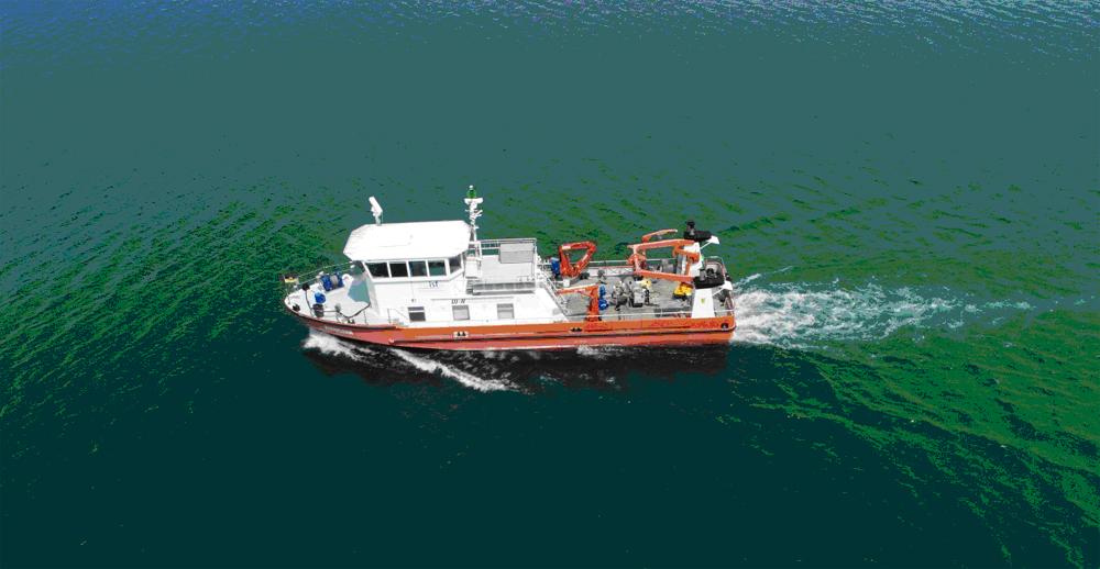Schiff auf See